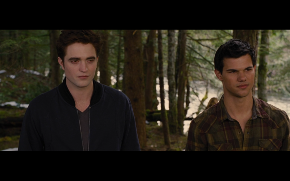 The Twilight Saga Breaking Dawn Part 2 - 1849