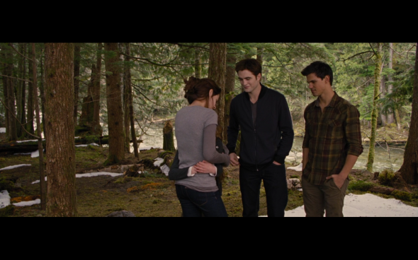 The Twilight Saga Breaking Dawn Part 2 - 1875