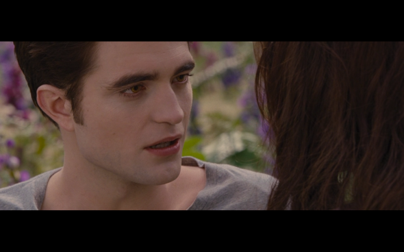 The Twilight Saga Breaking Dawn Part 2 - 1941