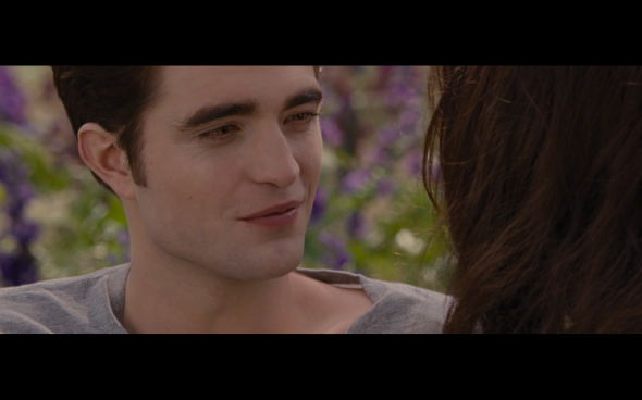 The Twilight Saga Breaking Dawn Part 2 - 1953