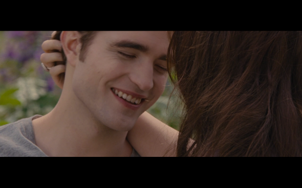 The Twilight Saga Breaking Dawn Part 2 - 1955