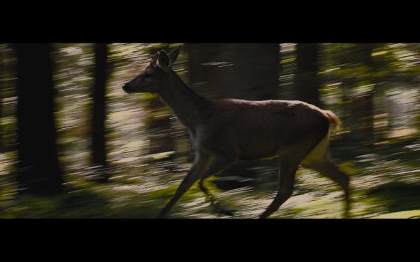 The Twilight Saga Breaking Dawn Part 2 - 210