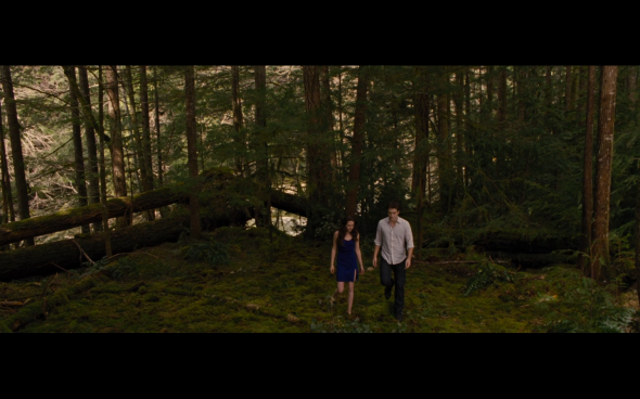 The Twilight Saga Breaking Dawn Part 2 - 214