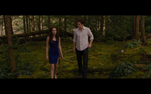 The Twilight Saga Breaking Dawn Part 2 - 215