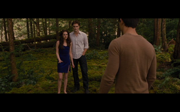 The Twilight Saga Breaking Dawn Part 2 - 222