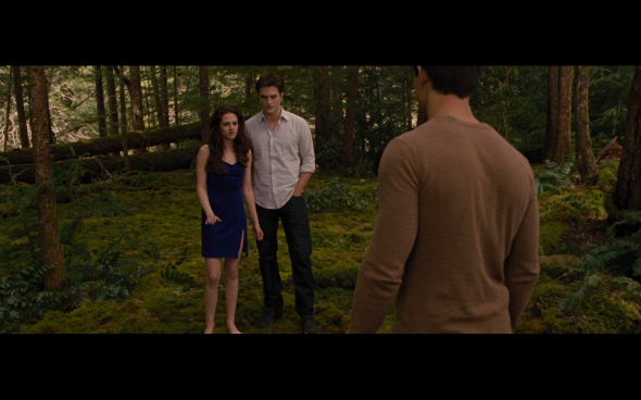 The Twilight Saga Breaking Dawn Part 2 - 223