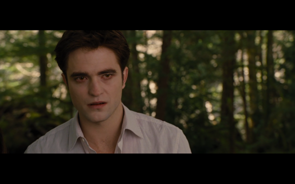 The Twilight Saga Breaking Dawn Part 2 - 228