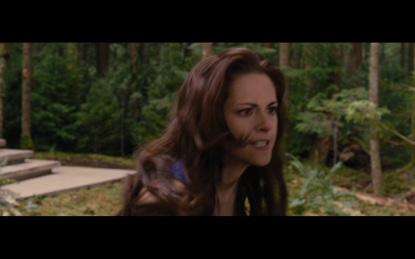 The Twilight Saga Breaking Dawn Part 2 - 309