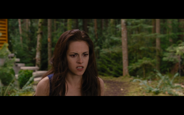 The Twilight Saga Breaking Dawn Part 2 - 313