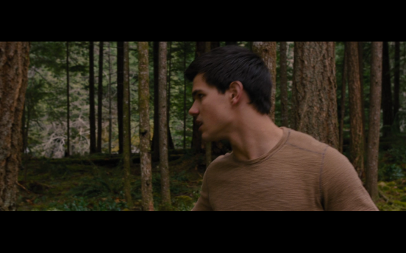 The Twilight Saga Breaking Dawn Part 2 - 315