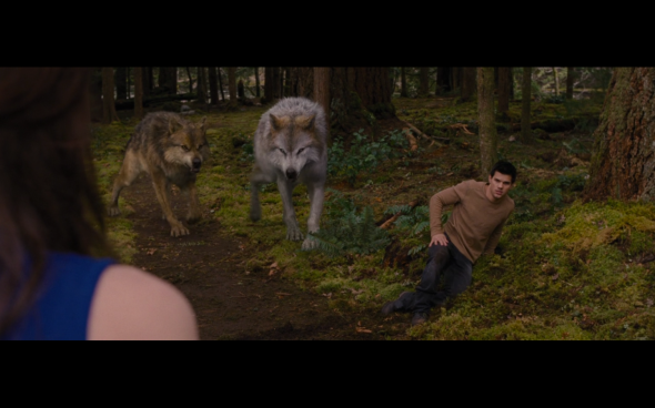 The Twilight Saga Breaking Dawn Part 2 - 325