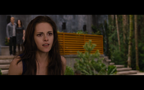 The Twilight Saga Breaking Dawn Part 2 - 330