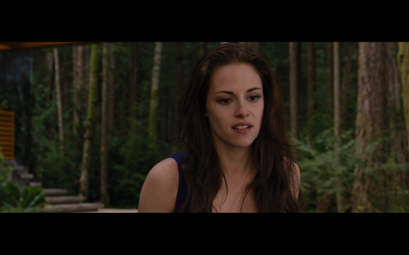 The Twilight Saga Breaking Dawn Part 2 - 345