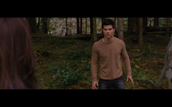 The Twilight Saga Breaking Dawn Part 2 - 348
