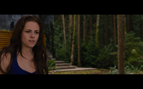 The Twilight Saga Breaking Dawn Part 2 - 351