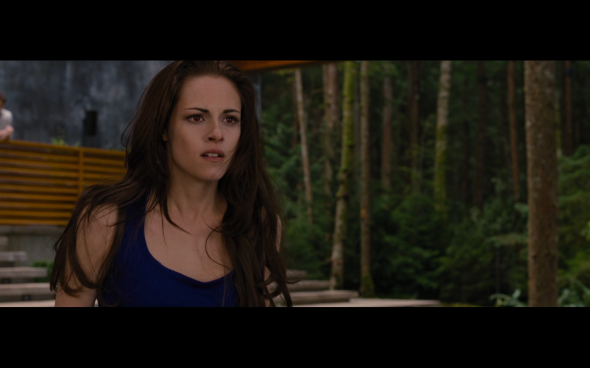 The Twilight Saga Breaking Dawn Part 2 - 353