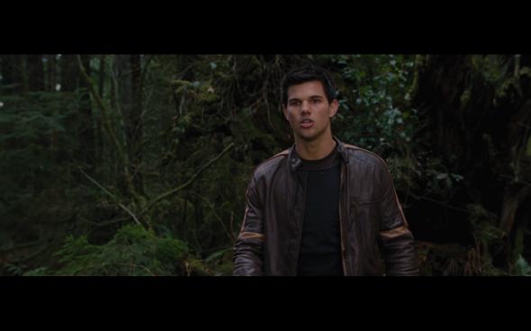 The Twilight Saga Breaking Dawn Part 2 - 500