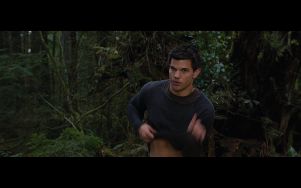 The Twilight Saga Breaking Dawn Part 2 - 510