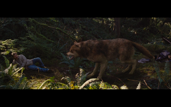 The Twilight Saga Breaking Dawn Part 2 - 525