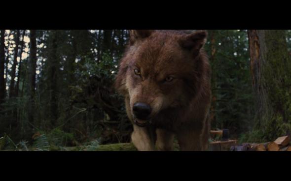 The Twilight Saga Breaking Dawn Part 2 - 527