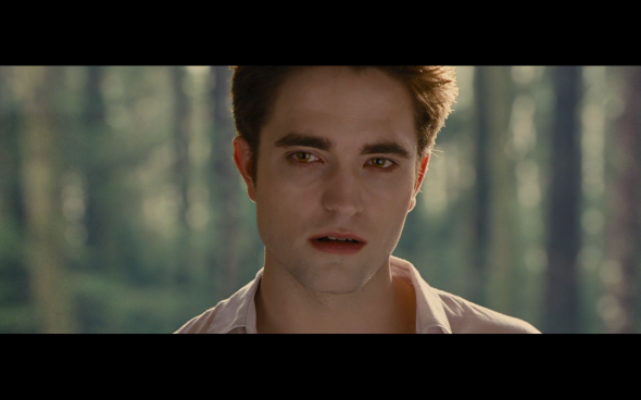 The Twilight Saga Breaking Dawn Part 2 - 53