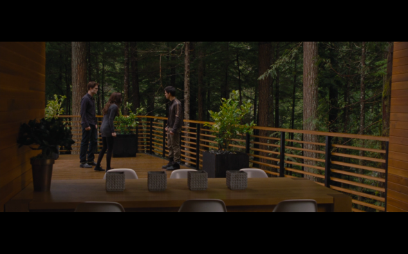 The Twilight Saga Breaking Dawn Part 2 - 533