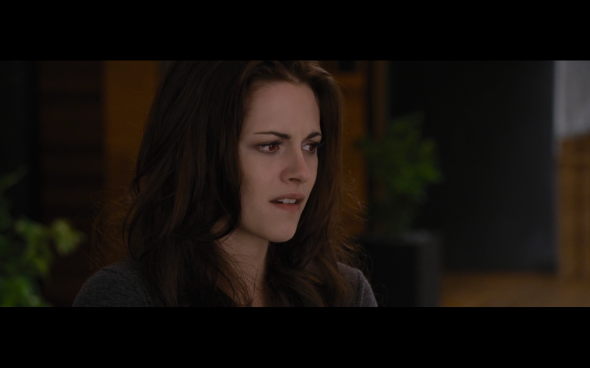 The Twilight Saga Breaking Dawn Part 2 - 536