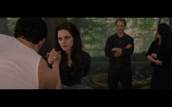 The Twilight Saga Breaking Dawn Part 2 - 627