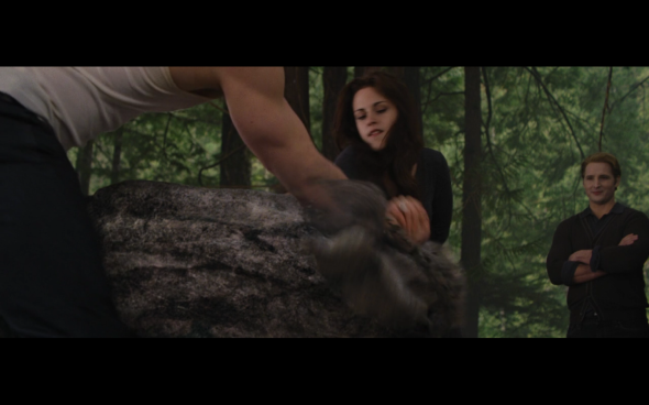 The Twilight Saga Breaking Dawn Part 2 - 639