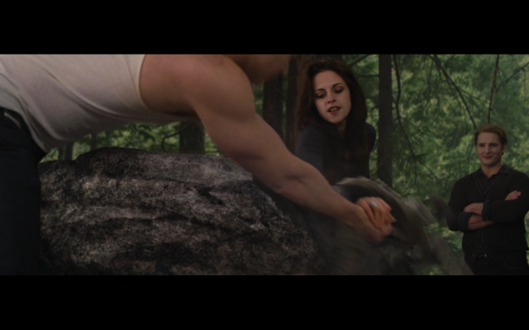 The Twilight Saga Breaking Dawn Part 2 - 640