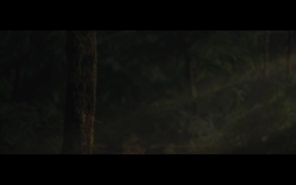 The Twilight Saga Breaking Dawn Part 2 - 651