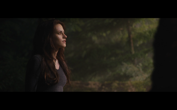 The Twilight Saga Breaking Dawn Part 2 - 653