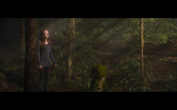 The Twilight Saga Breaking Dawn Part 2 - 655