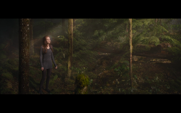 The Twilight Saga Breaking Dawn Part 2 - 656