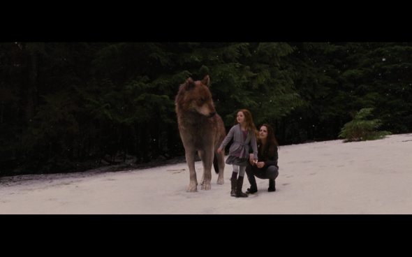 The Twilight Saga Breaking Dawn Part 2 - 674