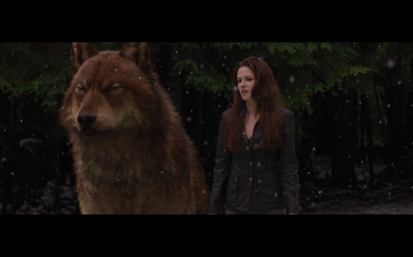 The Twilight Saga Breaking Dawn Part 2 - 676