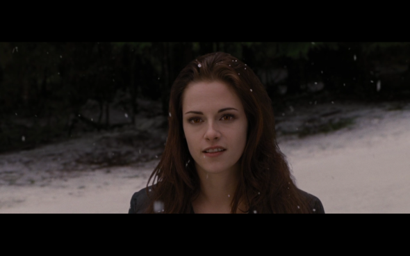 The Twilight Saga Breaking Dawn Part 2 - 678