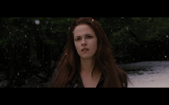 The Twilight Saga Breaking Dawn Part 2 - 687