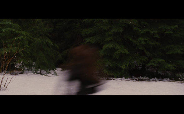 The Twilight Saga Breaking Dawn Part 2 - 695