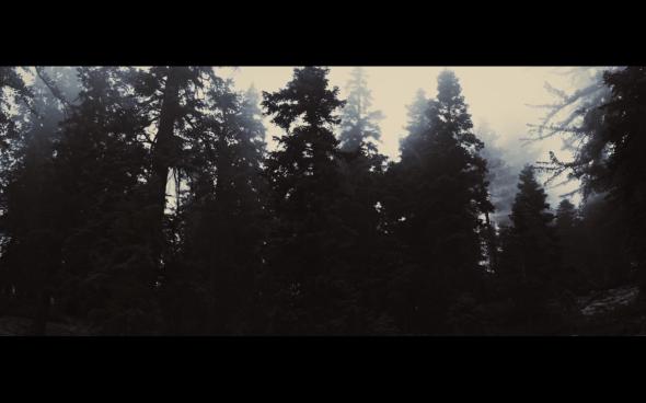 The Twilight Saga Breaking Dawn Part 2 - 736