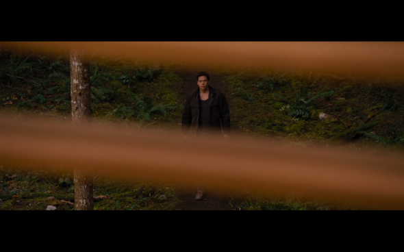 The Twilight Saga Breaking Dawn Part 2 - 804