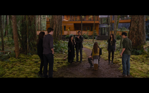 The Twilight Saga Breaking Dawn Part 2 - 868