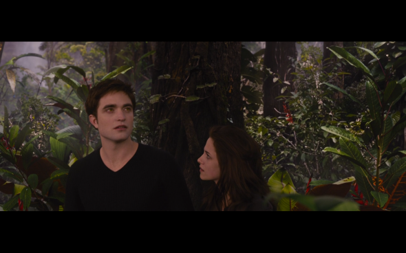 The Twilight Saga Breaking Dawn Part 2 - 913