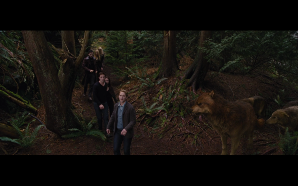 The Twilight Saga Breaking Dawn Part 2 - 942