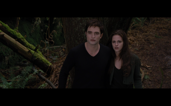 The Twilight Saga Breaking Dawn Part 2 - 943
