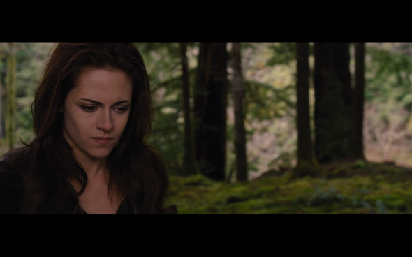 The Twilight Saga Breaking Dawn Part 2 - 983
