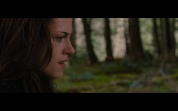 The Twilight Saga Breaking Dawn Part 2 - 986