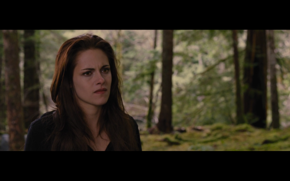 The Twilight Saga Breaking Dawn Part 2 - 990