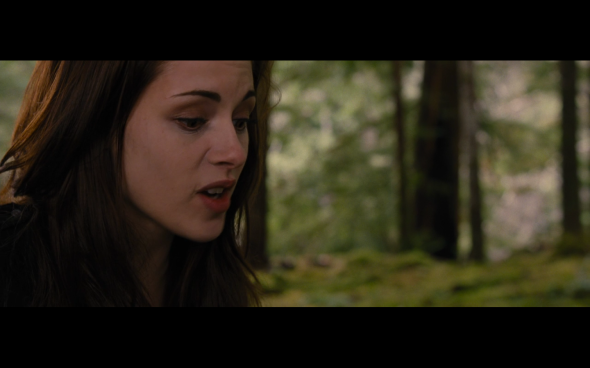 The Twilight Saga Breaking Dawn Part 2 - 995