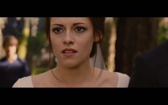 Twilight Saga Breaking Dawn Part 1 - 1301